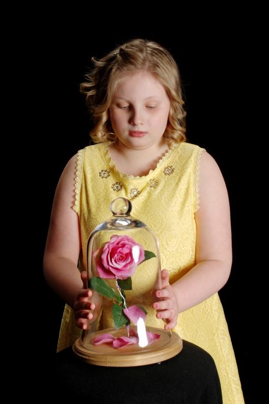 ClarkeP_PortraitSimple Beauty's Rose